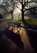Park Benches Photos - Saint Stephens Green, Dublin, Co by The Irish Image Collection