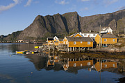 Norwegian Fishing Village Framed Prints - Sakrisoy Framed Print by Heiko Koehrer-Wagner