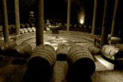 Mendoza Photos - Salentein Winery 2 by Chuck Parsons