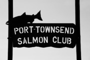 Port Town Framed Prints - Salmon Club Framed Print by David Lee Thompson