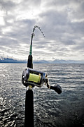 Fishing   Metal Prints - Salmon Fishing Rod Metal Print by Darcy Michaelchuk