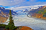 Canadian Landscape Photos - Salmon Glacier by David Salter