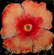 California Poppy Paintings - Salmon Poppy  2 by Cj Carroll