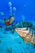 Scuba Paintings - Salt Life by Mike  Haslam