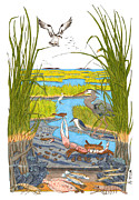 Connecticut Drawings Prints - Salt Marsh Print by John Meszaros