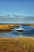 Salt Marsh Photos - salt Marsh Sailboat by John Greim