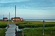 Beach Shack Prints - Salt marsh shack. Print by John Greim