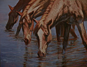Salt River Wild Horses Paintings - Salt River Redheads by Mia DeLode