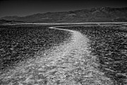 Death Valley Photos - Salt Road by Matt  Trimble