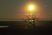 Migrating Birds Originals - Salton Sea Sunset by Jerry Kalman
