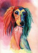 Saluki Framed Prints - Saluki Sunset Framed Print by Kathleen Sepulveda