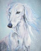 Saluki Framed Prints - Saluki white beauty Framed Print by L A Shepard