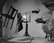 Cat Art Photos - Salvador Dali 1904-1989 by Granger