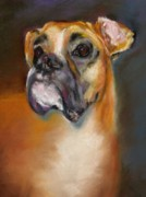 Boxer Pastels Framed Prints - Sam Framed Print by Frances Marino