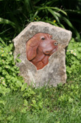 Pet Reliefs Prints - Sam Print by Ken Hall
