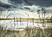 Seashore Fine Art Print Posters - Samish Bay Shore Poster by James Williamson