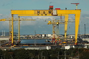 Noel Sofley - Samson and goliath