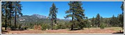 San Bernardino Forest Vista Print by Glenn McCarthy Art and Photography
