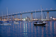San Diego Bay At Nightfall Print by Margaret Pitcher