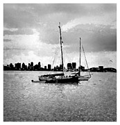 Sentinel Building Prints - San Diego Bay Sailboats Print by RJ Aguilar