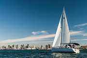 Photogaph Art - San Diego Sailboat Two by Josh Whalen