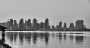Seaport Posters - San Diego Skyline Black and White Poster by Connie Cooper-Edwards