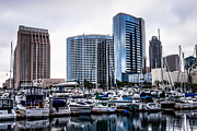 Condos Prints - San Diego Skyline Luxury Marina Print by Paul Velgos