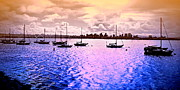 San Diego Artist Digital Art - San Diego View From Shleter Island II by Visual Artist  Frank Bonilla