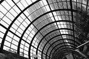 Skylights Posters - San Francisco Crocker Galleria - 5D17869 - black and white Poster by Wingsdomain Art and Photography