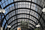 Architecture Prints - San Francisco Galleria - 5D17074 Print by Wingsdomain Art and Photography
