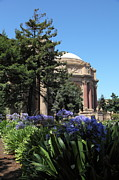 Palace Of Fine Arts Prints - San Francisco Palace of Fine Arts - 5D18050 Print by Wingsdomain Art and Photography