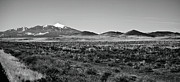 Black And White Prints Prints - San Francisco Peaks Print by Gilbert Artiaga