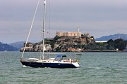 Alcatraz Lighthouse Posters - San Francisco Sailing Poster by Tap On Photo