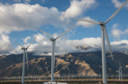 Natural Resources Prints - San Gorgonio Pass Wind Farm II Print by Clarence Holmes