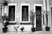 Screen Doors Photo Metal Prints - San Juan Living 2 Metal Print by Perry Webster