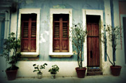 Old San Juan Framed Prints - San Juan Living 3 Framed Print by Perry Webster