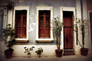 Screen Doors Framed Prints - San Juan Living Framed Print by Perry Webster