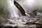 Eagles Digital Art - Sanctuary by Bill Stephens
