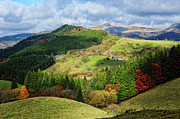 Mountain Scene Prints - Sancy Fall In Auvergne Print by Bernard Collardey Photographie