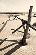 Old Fence Post Prints - Sand and Fences Print by Heather Applegate