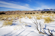 Sand Dunes Photo Originals - Sand and Snow by Mike  Dawson