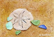 Green Glass Framed Prints - Sand Dollar and Beach Glass Framed Print by Sheryl Heatherly Hawkins