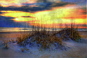 Sea Oats Framed Prints - Sand Dune and Sea Oats Sunrise I Framed Print by Dan Carmichael