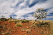 Sand Dunes Art - Sand Dune Formations At Uluru National by Richard Nowitz