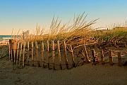 Sunset Posters Prints - Sand Dune in Late September - Jersey Shore Print by Angie McKenzie