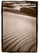 Black Posters - Sand Dune Shadows Death Valley Poster by Steve Gadomski