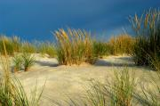 Sand Dunes Framed Prints - Sand Dunes Framed Print by Marc Bittan