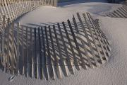 Sand Fences Prints - Sand Fence On The Beach In Destin Print by Marc Moritsch