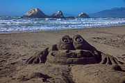 Wave Art - Sand frog  by Garry Gay