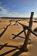 Old Fence Posts Metal Prints - Sand Metal Print by Heather Applegate